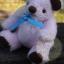 ตุ๊กตาหมีขนสีชมพูขนาด 16 ซม. - DoBear thumbnail 4
