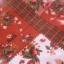 กระเป๋าสะพาย PINK HOUSE จากนิตยสาร e-MOOK 2011 บรรจุใน original package thumbnail 8