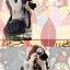 กระเป๋ากล้องแฟชั่นเกาหลี SLR DSLR Mirrorless thumbnail 4