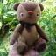 ตุ๊กตาหมีผ้าขนสีน้ำตาลขนาด 22 cm. - BandBand thumbnail 6