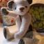 ตุ๊กตาหมีผ้าวูลท์สีเทาขนาด 19 cm. - Lilac thumbnail 4