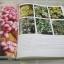สวนในบ้าน เล่ม 25 สวนหลากสไตล์ พิมพ์ครั้งที่ 4 thumbnail 3