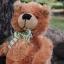 หมีนุ่มนิ่มสีน้ำตาล สูง 27 ซม. thumbnail 5