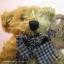 หมีเท็ดดี้ตัวผอม ขนาด 19 ซม. thumbnail 2