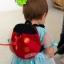 Baby Safety Backpack Harness, Ladybug2 in 1 กระเป๋าเป้เด็กใส่ของ + สายจูงเด็กกันเด็กหลง เต่าทอง thumbnail 3