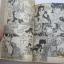 THE STAR ชุด เล่ม 1,2,3,4,5,6,7,8,10,11,12 ขาดเล่ม 9 ( 12 เล่มจบ ) ยูซูรุ ชินาซากิ เขียน thumbnail 6