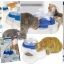 cat it - Fresh & Clear น้ำพุและชามอาหารในหนึ่งเดียว thumbnail 1