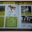 ปากกาอัจฉริยะ Tutor Pen รุ่นใหม่หนังสือ 10 เล่ม แถมโปสเตอร์ ก-ฮ thumbnail 19