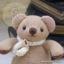 ตุ๊กตาหมีผ้าขูดขนสีโอวันตินขนาด 9.5 cm. - Niza thumbnail 5
