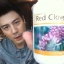Red Clover Plus thumbnail 5