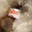 หมีขาวขนปุย ขนาด 26 ซม. thumbnail 4