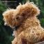 ตุ๊กตาหมีผ้าขนหยิกขนาด 25 cm. - Bagel thumbnail 5