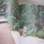 I Love Garden Vol. 8 Make Me Garden จัดสวนด้วยใจแบบไม่สำเร็จรูป โดย ทิพาพรรณ ศิริเวชฏารักษ์และวรัปศร อัศนียุทธ thumbnail 11
