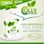 Colly Chlorophyll Fiber Plus คลอลี่ คลอโรฟิลล์ ไฟเบอร์ พลัส (15ซอง/กล่อง) จำนวน 1กล่อง thumbnail 15