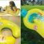 ห่วงยางแม่ลุก ห่วงยางสองด้านเล่นน้ำเด็กเล็ก คุณพ่อ คุณแม่ คุณลูก : Parent - Child Swim Ring: สนุกได้อย่างปลอดภัย ฝั่งเด็ก เป็นห่วงยางสอดขา มีผนักพิงหลัง มีของเล่น (ดูภาพด้านใน) ฝั่งผู้ใหญ่ อ้วนแค่ไหนก็ใส่ได้ เพราะเป็นแบบโอบรอบตัว (ฝั่งผู้ใหญ่ thumbnail 1