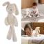 ตุ๊กตากระต่ายเพื่อนรักสุดฮิต ตุ๊กตากระต่าย ขนนุ่ม สีขาว ขนาด 11x46cm. เหมาะเป็น เพื่อนใหม่ตัวน้อยให้ลูกรัก ตุ๊กตากระต่ายสีขาว Millie เนื้อผ้ากำมะหยี่ขนสั้นสุดนุ่ม งานคุณภาพจากแบรนด์ Mamas & Papas น่ารัก น่ากอด จับให้นั่งได้ ผ้าเนื้อดีนิ่มมากๆ จนตัวเล็กติด thumbnail 1
