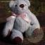 ตุ๊กตาหมีผ้าขนสีฟ้าขนาด 12 cm. - Bess thumbnail 2