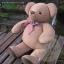 ตุ๊กตาหมีอ้วน ขนาด 43 cm-Niza Jumbo thumbnail 3