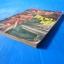 ครุฑดำ เล่ม 3 คมน์ พยัคฆราช บรรลือสาส์น thumbnail 3