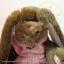 กระต่ายสีน้ำตาล ขนาด 22 ซม. thumbnail 2