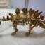 ชุดขุดฟอสซิลโมเดลไดโนเสาร์ 2ตัว(ประกอบได้) thumbnail 7