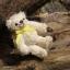 ตุ๊กตาหมีผ้าขนสีครีมขนาด 10 cm. - Muffin thumbnail 3
