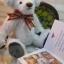 ตุ๊กตาหมีผ้าขนยุ่งสีขาวขนาด 20 cm. - Friday thumbnail 4