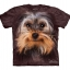 Yorkshire Terrier Face - Youth thumbnail 1