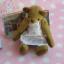 ตุ๊กตาหมีผ้าขนสั้นสีน้ำตาลขนาด 13 cm. - Cracker Girl thumbnail 3