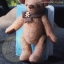 ตุ๊กตาหมีผ้าวูลสีน้ำตาลขนาด 21 cm. - Holly thumbnail 4