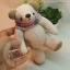 ตุ๊กตาหมีสีครีมขนาด 16 ซม. - DoBear thumbnail 4