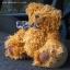 ตุ๊กตาหมีผ้าขนหยิกขนาด 25 cm. - Bagel thumbnail 4