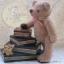 ตุ๊กตาหมีผ้าวูลท์ขนาด 20 cm. - Banoffee thumbnail 1