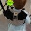 .ใกล้หมด รอยืนยัยนก่อนนะคะ แบทแมน Baby Safety Backpack Harness, Batman 2 in 1 กระเป๋าเป้เด็กใส่ของ + สายจูงเด็กกันเด็กหลงค้างคาว ขนาดเป้ : สูง 15.5 cm.กว้าง 18 cm. เชือกจูงยาว 78 cm.สีจริงภาพสุดท้าย thumbnail 2
