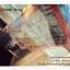 PR056 ผ้าพันคอแฟชั่น ผ้าคลุมไหล ลายสวย เก๋ thumbnail 5